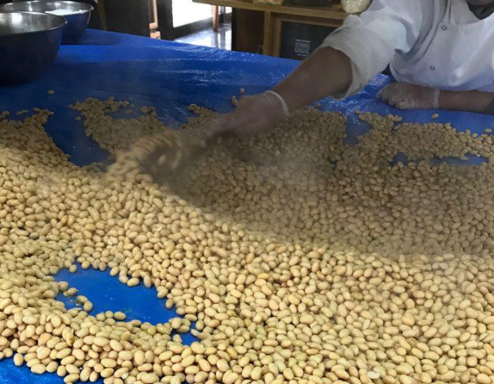 大豆を冷ます工程